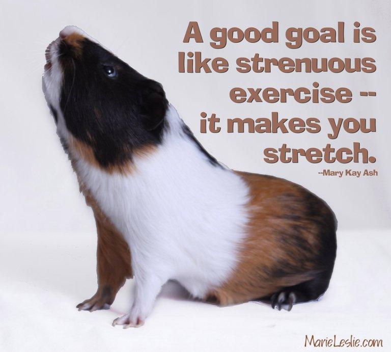 a good goal is like strenuous exercise.