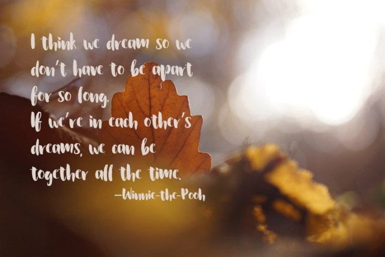I think we dream so we don't have to be apart for so long. If we're in each other's dreams, we can be together all the time. –Winnie-the-Pooh