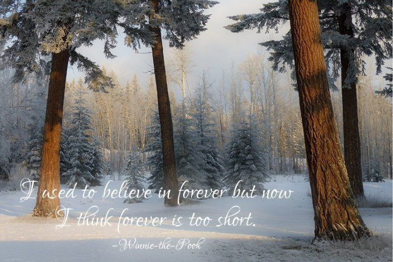 I used to believe in forever but now I think forever is too short. –Winnie-the-Pooh