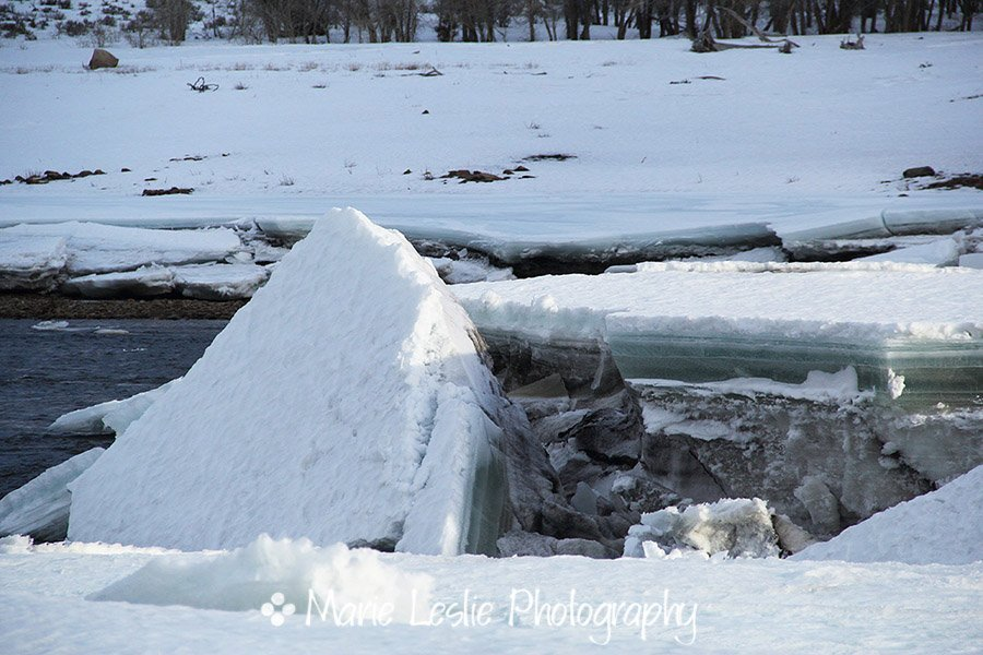 Ice Floe on the Gunnison River