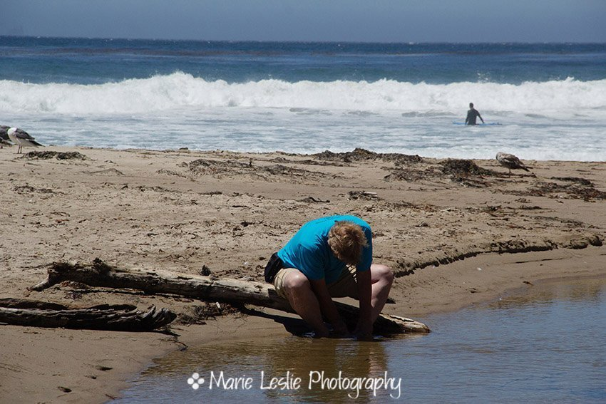 trying to scrape off tar from the beach