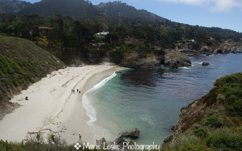 Point Lobos State Reserve–A Photographer's Paradise
