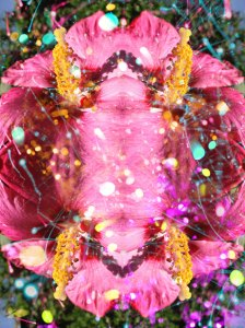Flor romance: Appart II