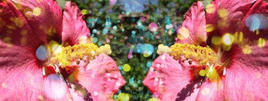 "Flor romance: Encounter I, 2013, C-print, 20"" x 53.3"""