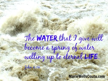 The water that I give will become a spring welling up to eternal life. John 4:14