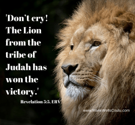 """The Lion from the tribe of Judah has won the victory."""