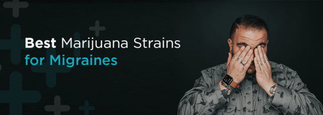 Best marijuana strains for migraines | Marijuana Doctors