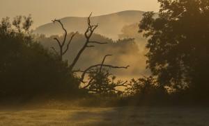 Sunrise looking towards Hambledon Hill
