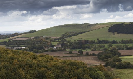 Hambledon Hill  from Norton Woods
