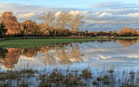 Bere Marsh Farm across the flooded Stour
