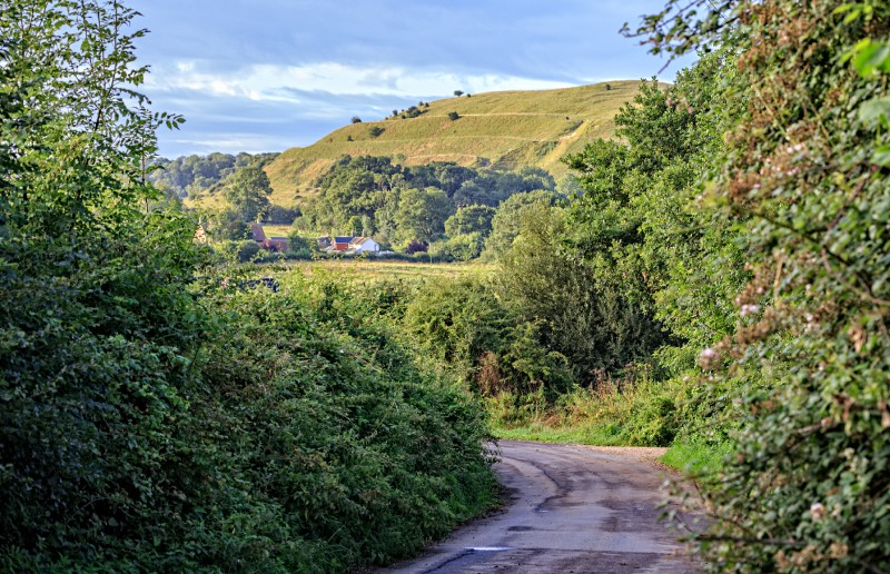 View of Hambledon hill from the Farrington road