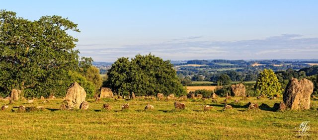 Towards the Blackmore Vale from the Stone Circle near Shroton Brake.