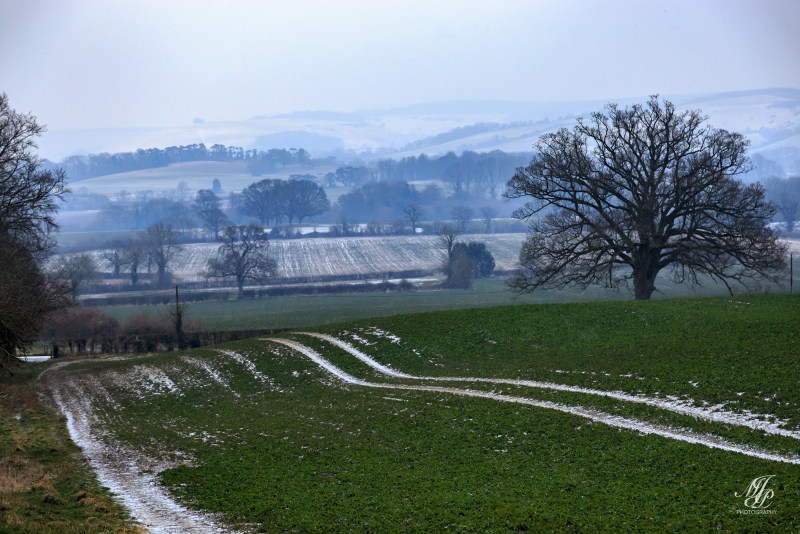 Towards Fontmell down
