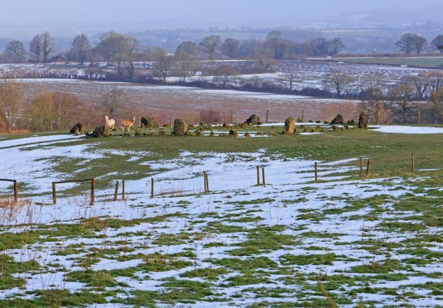 Stone Circle to the Blackmore Vale.