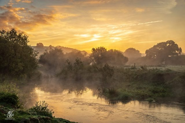 Mist on the Stour near Hanford