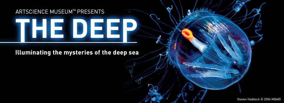 Image result for the deep