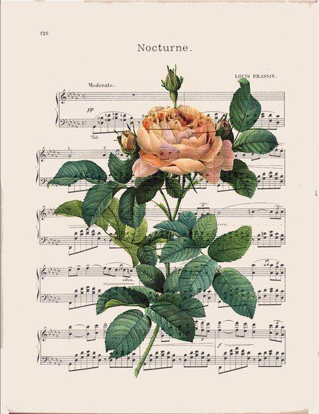 laminas decoupage de flores (6)