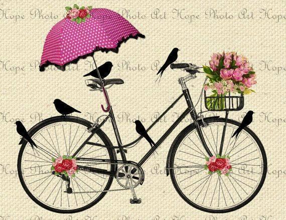 laminas bicicletas (12)