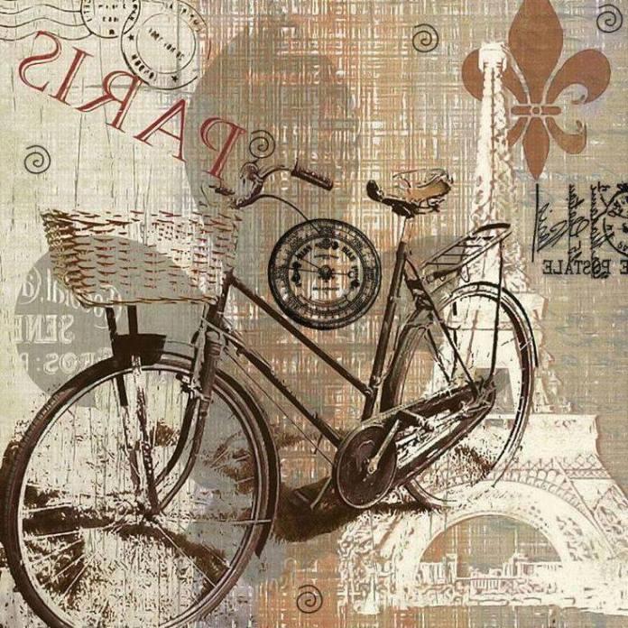 laminas bicicletas (14)