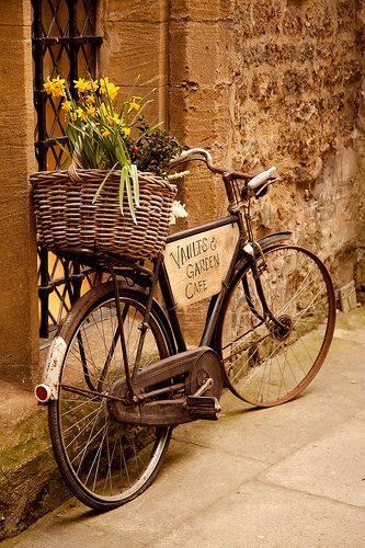 laminas bicicletas (3)