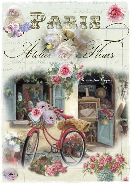 laminas bicicletas (9)