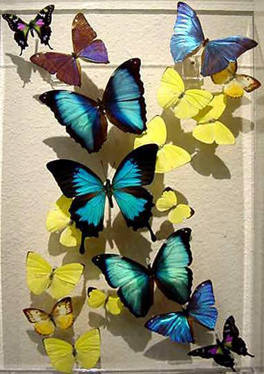 mariposas-decoupage-1