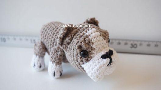 perro-bulldog