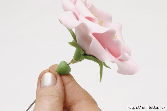 rosa-porcelana-fria-17