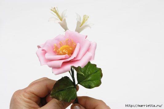 rosa-porcelana-fria-34