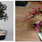 DIY Como hacer bonsai artificial