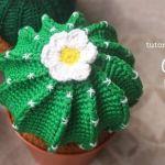 DIY para hacer un cactus en amigurimi