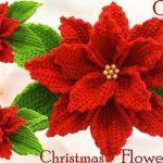 Flor 3D de noche buena o navidad a crochet
