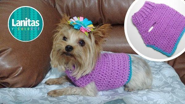 Cómo tejer un Jersey a crochet para mascota