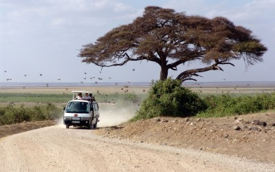 VIP INTENSIVE IN KENYA, MAL D'AFRICA & WATER BALANCE