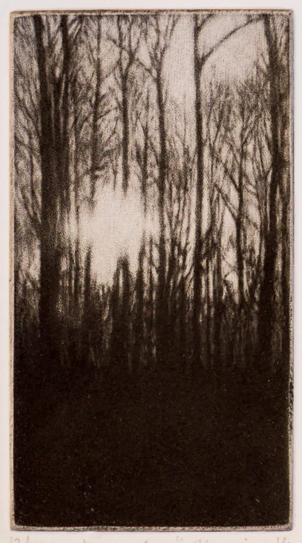 """""""December"""" - picture of a low winter sun sifting through the trees in the forest. Original print mezzotint by painter-printmaker Marina Kim"""