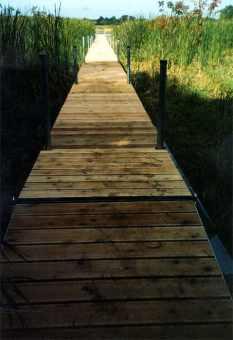 Wetland Boardwalk