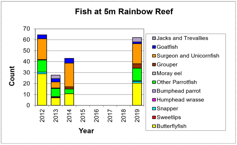 Figure 10:  Fish 5m -  Taveuni - Rainbow Reef