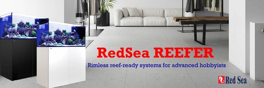 Redsea Aquariums