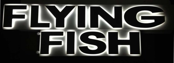 nomi-nave-FLYING-FISH3