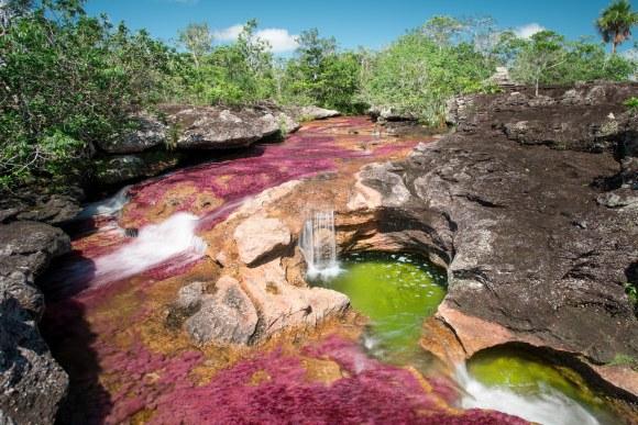 Caño Cristalitos en Colombia Río de Colores