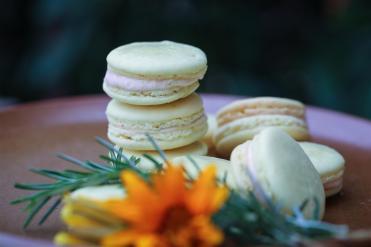 macarons provence au romarin et à la fleur d'oranger (9 sur 32) (Large)