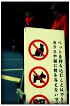 Tokyo1-053b
