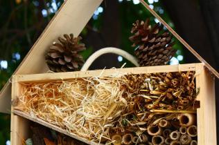 Photo du détail d'une cabane à insecte