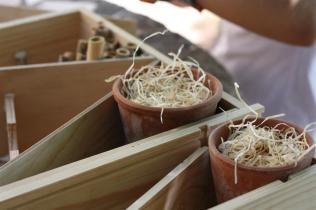 Photo du remplissage d'une cabane à insecte