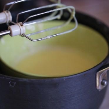 bûche-de-noël-praliné-citron-craquant-gavottes (9 of 26)