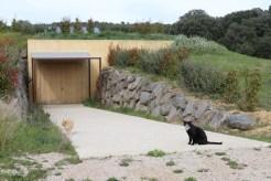 Attention ce sont les chats qui contrôlent l'entrée dans la cave