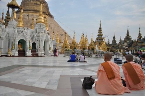 Yangon Paya Shwedagon moines