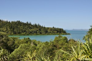 Coral Bay Airlie Beach 2 0803