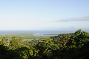Daintree Rainforest 0727