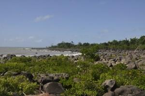 Mission Beach 1 0730